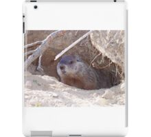 Mama Groundhog iPad Case/Skin