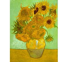 'Twelve Sunflowers' by Vincent Van Gogh (Reproduction) Photographic Print