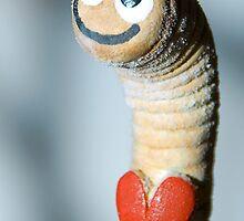 Happy Worm by Jonas Bohlin