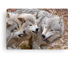 Buddy your just not getting the message!!! Metal Print