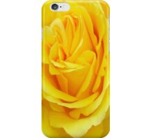 Beautiful Yellow Rose Closeup  iPhone Case/Skin