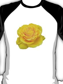 Beautiful Yellow Rose Closeup  T-Shirt