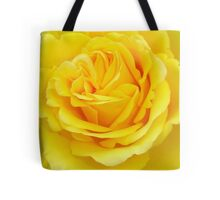 Beautiful Yellow Rose Closeup  Tote Bag