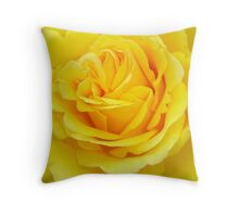 Beautiful Yellow Rose Closeup  Throw Pillow