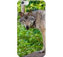 Forest Guardian 3 iPhone Case/Skin