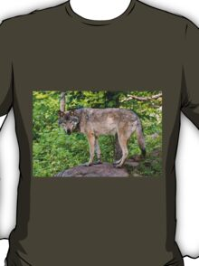 Forest Guardian 3 T-Shirt