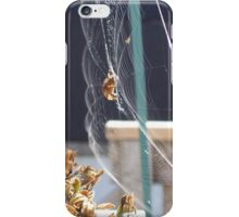 Spider Web In Breeze iPhone Case/Skin