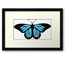Colored butterfy 7 Framed Print