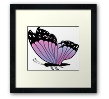 Colorful Butterfly 2 Framed Print