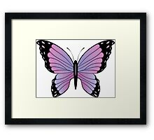 Colorful Butterfly 3 Framed Print
