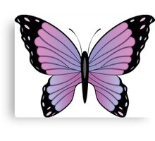 Colorful Butterfly 3 Canvas Print