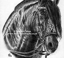 P.R.E. - Spanish Stallion by Petportraits