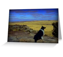Kali at the Painted Desert Greeting Card