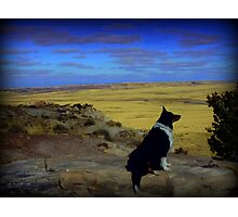 Kali at the Painted Desert Photographic Print