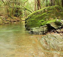 Mill Creek by Brian C. Racine