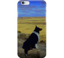 Kali at the Painted Desert iPhone Case/Skin