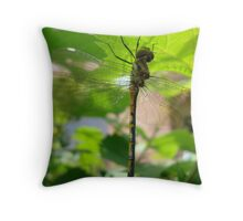 dragon fly 2 Throw Pillow
