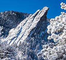 The Third Flatiron - Through The Trees by Gregory J Summers