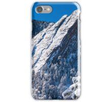The Third Flatiron - Through The Trees iPhone Case/Skin
