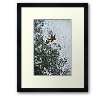 The Beauty of Autumn Rains - a Vertical View Framed Print