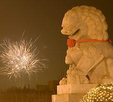 Lion's Delight by KLiu