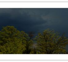 0906 - HDR Panorama - Trees and Sky Sticker