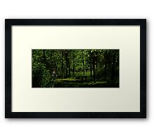 0929 - HDR Panorama - Park Bench Framed Print