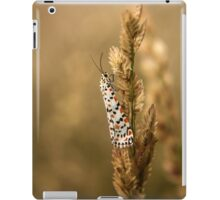 Crimson Speckled Footman or Flunkey (Utetheisa Pulchella)  iPad Case/Skin