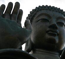 Tian Tan Buddha by Gary Collier