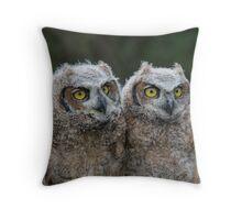 Great Horned Owl Babies Throw Pillow