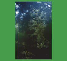 0947 - HDR Panorama - Flowers Kids Tee