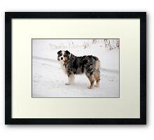 Older and Wiser Framed Print