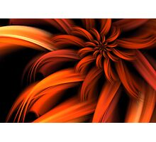 The Red Dahlia Photographic Print