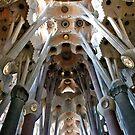 Sagrada Familia by phil decocco