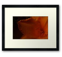 0955 - HDR Panorama - Lilly Framed Print