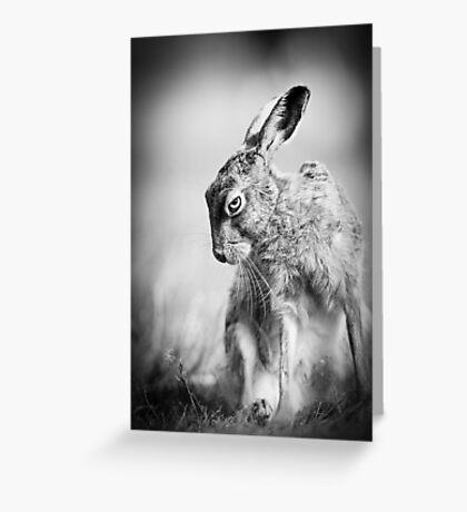 Dark Hare Greeting Card