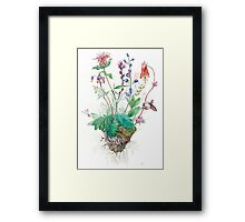 Wildlfowers Framed Print