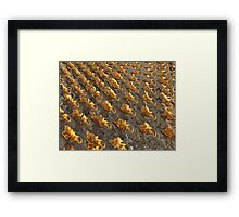 Abstract Melting Metal  Framed Print