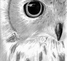 Owl by Meagan Snee