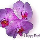 Happy Birthday Orchids by Bonnie T.  Barry