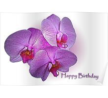 Happy Birthday Orchids Poster