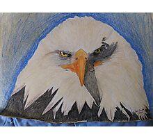 exotic animals & birds Photographic Print