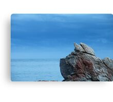Rock against the sea Canvas Print