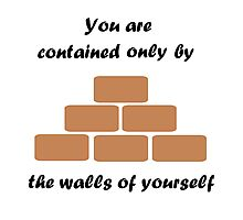 The Walls Of Yourself Photographic Print