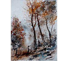 WATERCOLOR 220208 Photographic Print