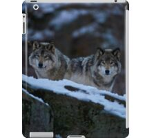 Timber Wolves In Late Evening. iPad Case/Skin