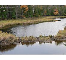 Beaver Dam Photographic Print