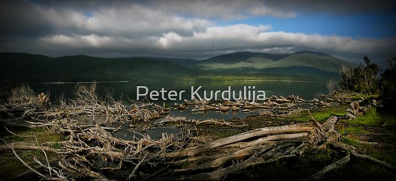 Te Anau Lake by Peter Kurdulija