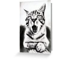 cat portrait... pencil Greeting Card