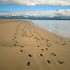Footsteps by Andrew Jackson